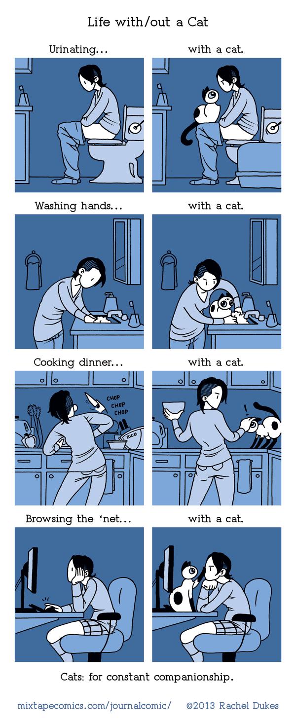 vivere con micio