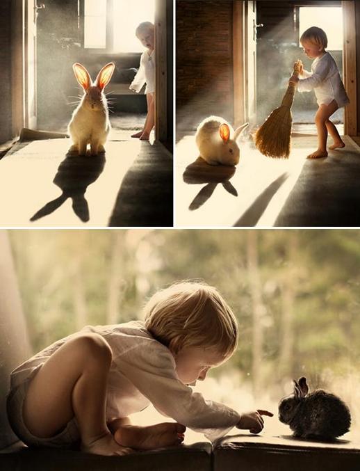 elena shumilova coniglio