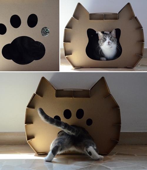 oliver e gatto casetta