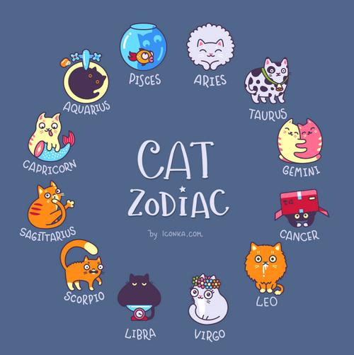segni zodiacali gatti