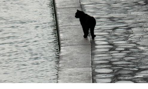 foto di Elena Fiorio - Burano maggio 2009